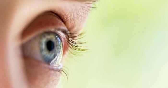ผักบุ้ง เป็นผักที่ช่วยบำรุงสายตา เหมาะสำหรับผู้ที่มีปัญหาทางด้านสายตา