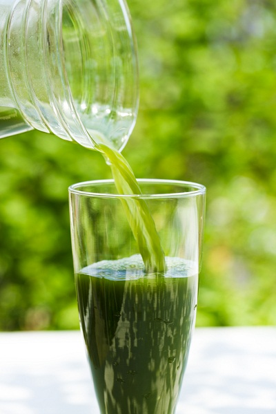 เมนูอาหารจากตำลึง ที่สามารถทำทานเองง่าย ๆ ได้ประโยชน์ ที่แอดอยากจะแนะนำเมนูที่สอง คือ น้ำตำลึง เมนูเครื่องดื่มทานคู่กับอาหารที่มีประโยชน์และอร่อย