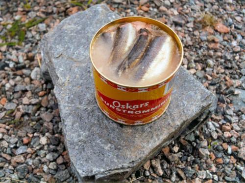 ด้วยความที่สวีเดนเป็นประเทศเมืองหนาวที่มีการจำกัดในเรื่องของอาหาร มีกรรมวิธีในการถนอมอาหาร จนกลายเป็น ปลาร้าสวีเดน เซอร์สตอร์มมิง